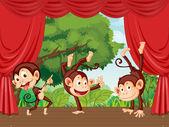 Monkeys on stage — Stock Vector