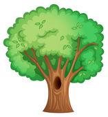Tree — Vettoriale Stock