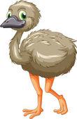 Emu cartoon — Stock Vector