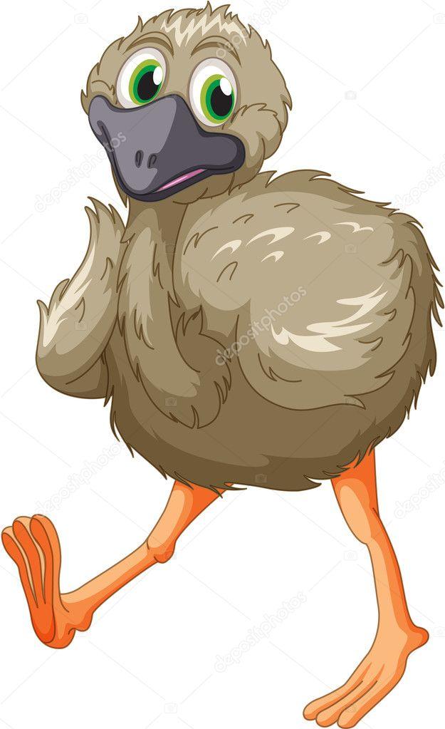 Emu cartoon - Stock Vector © interactimages #10387738