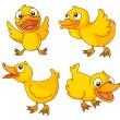 Stock Vector: Chicks