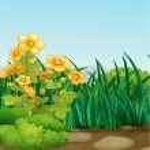 Garden — Stock Vector #10443827