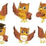 Owl series — Stock Vector