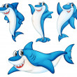 Shark series — Stock Vector