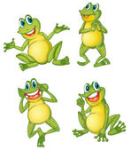 Frog series — Stock Vector