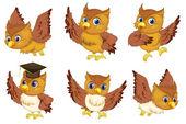 Série owl — Vecteur