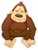 Gorilla — Stock Vector