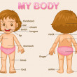 My body - Grafika wektorowa