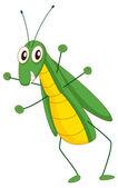 Grasshopper — Stock Vector