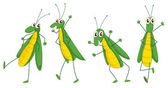 Grasshoppers — Stock Vector