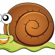 Snail cartoon - Stock Vector