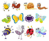 Illustration of a group of bugs — Stock Vector