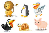 Group of animals — Stock Vector