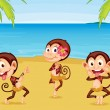 Three Monkeys on a Beach — Stock Vector
