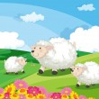 Royalty-Free Stock Vector Image: Sheep