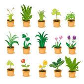 коллекция растений — Cтоковый вектор