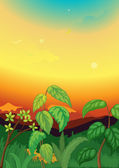 Sunset scene in jungle — Stock Vector