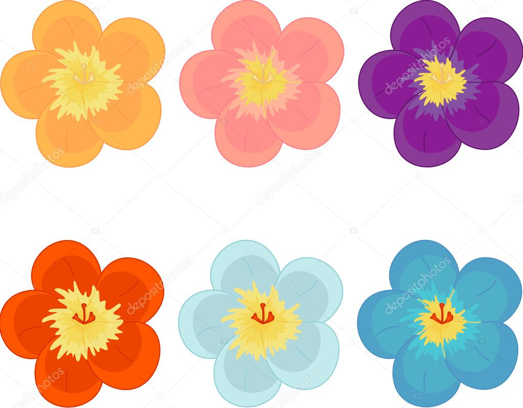 Illustration of flowers in different colours — Stock Vector #9960580