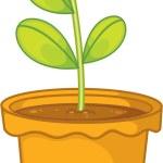 Plant — Stock Vector