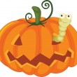 Worm and pumpkin - Stock Vector