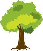 Ilustracja drzewa na biały — Wektor stockowy