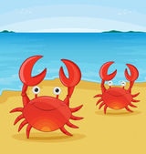 Crabs on beach — Stock Vector