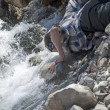 Thirst in the mountain river — Stock Photo