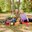 Couple picnicking in the forest — Stock Photo