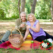 Stock Photo: Couple picnicking in the forest
