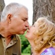 Senior couple kissing - Stock Photo
