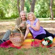 Couple picnicking in the forest — Stock Photo #10076129
