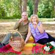 Couple picnicking in the forest — Stock Photo #10076153