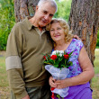 Adorable senior couple — Stock Photo