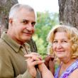 Adorable senior couple — Stock Photo #10076333