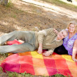 Couple picnicking in the forest — Stock Photo #10076382