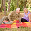 Couple picnicking in the forest — Stock Photo #10076398