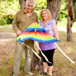 Couple in love flying a kite — Stock Photo #10076439