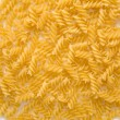 closeup of uncooked italian spiral pasta rotini — Stock Photo