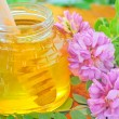 Glass jar full of honey and stick with acacia pink and white flo — Stock Photo #10465182