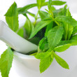 Mortar and mint leaves — Stock Photo #10676230