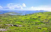 Irland-landschaft — Stockfoto