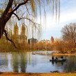 Stock Photo: Central Park, New York