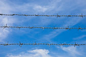 Barbed wires against blue sky. — Stock Photo