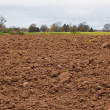 Freshly dug agricultural field — Stock Photo