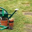 Stock Photo: Gardening implements on grass lawn