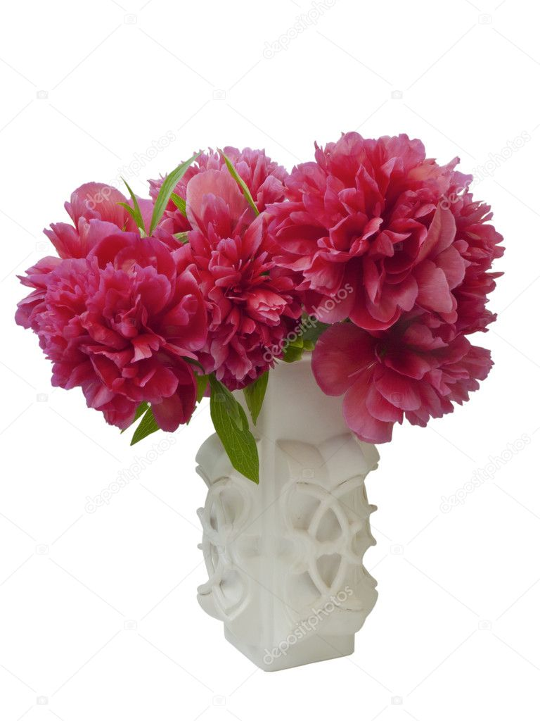 Bunch of peony flowers in white vase-isolated on white — Stock Photo #10524413