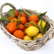 Royalty-Free Stock Photo: Basket of citrus