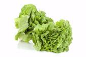 Green salad(lettuce) — Stock Photo