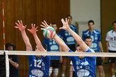 Kaposvar - partita di pallavolo kecskemet — Foto Stock