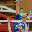 Kaposvar - Kazincbarcikvolleyball game — стоковое фото #9970250